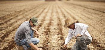 Fetaesc apresenta em Ituporanga nova modalidade de contratação de mão de obra rural