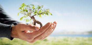 Conferência Pública marcará o Dia Mundial do Meio Ambiente em Ituporanga